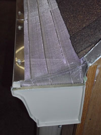 Another Gutter with Ox Mesh Leaf Protection